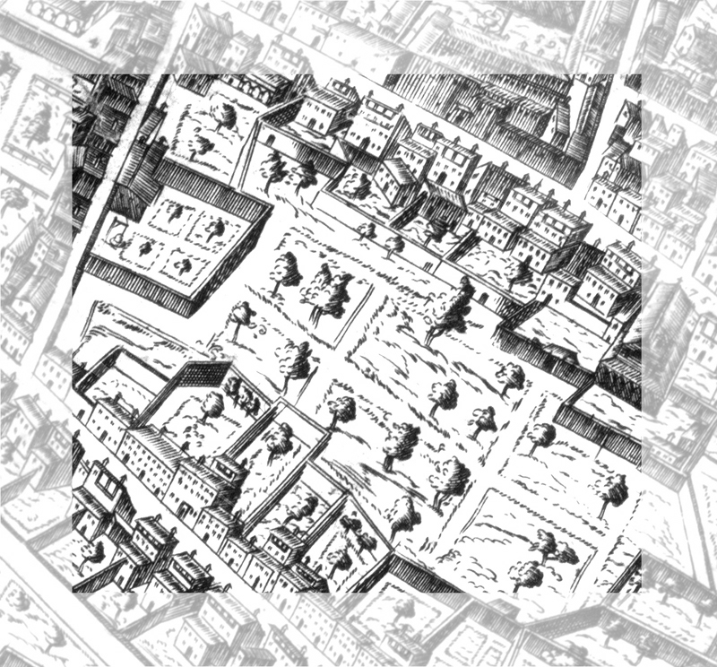 map of square 24